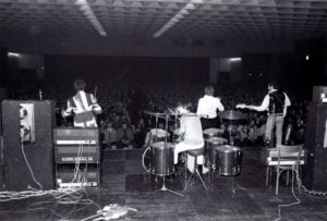 The Who perform at Kongresshalle in Cologne,Germany on November 6th, 1966
